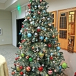 Dec 2016 MPR tree